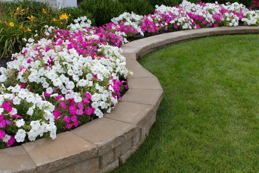 landscaping with grass and flowerbed