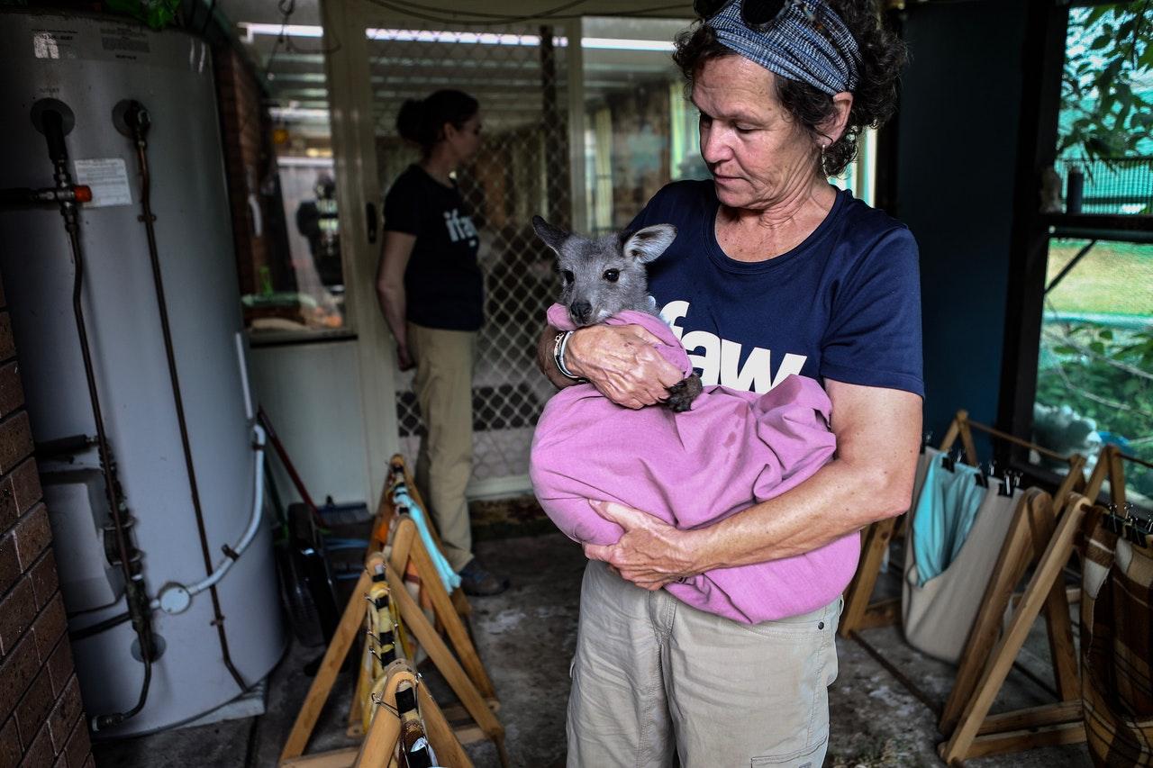 animal rescue volunteer
